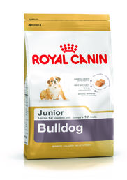 Bulldog Junior 12 kg